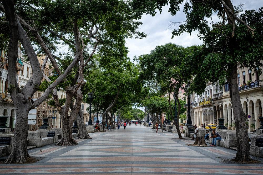 180427-Havana-138-1080.jpg