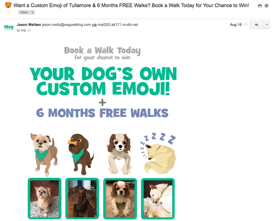 [Wag personalizes emails by tagging the name of the recipients' dogs to drive open rates]