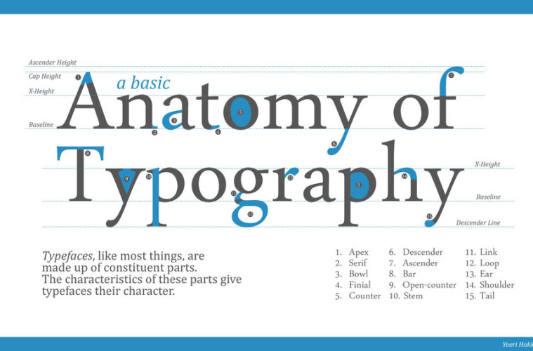 Although serifs are the most frequently cited parts in typography, each typeface includes a wide range of other defining parts.