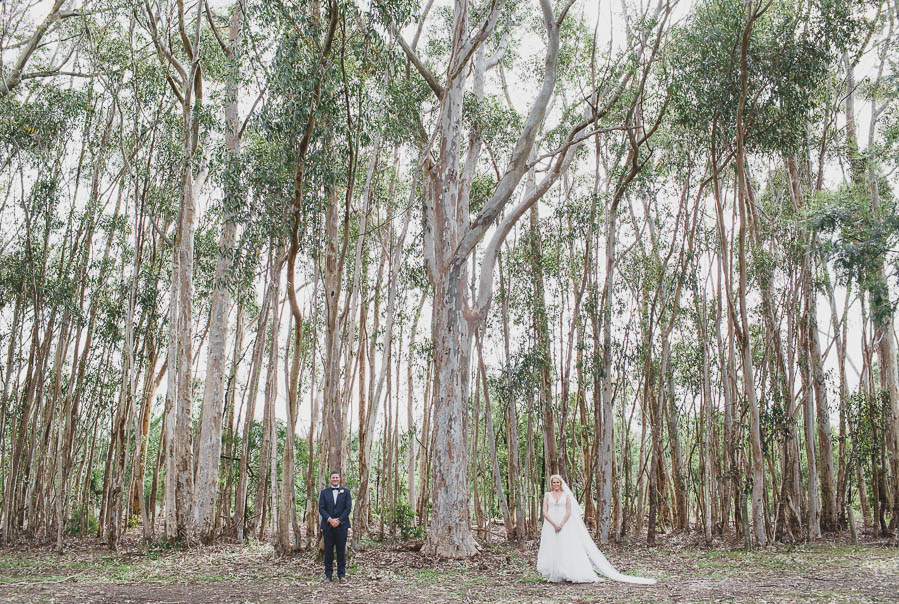 Mornington Peninsula Wedding Photography-98.jpg