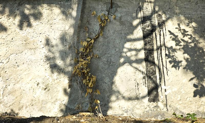 Muri di Italia 17, 2013