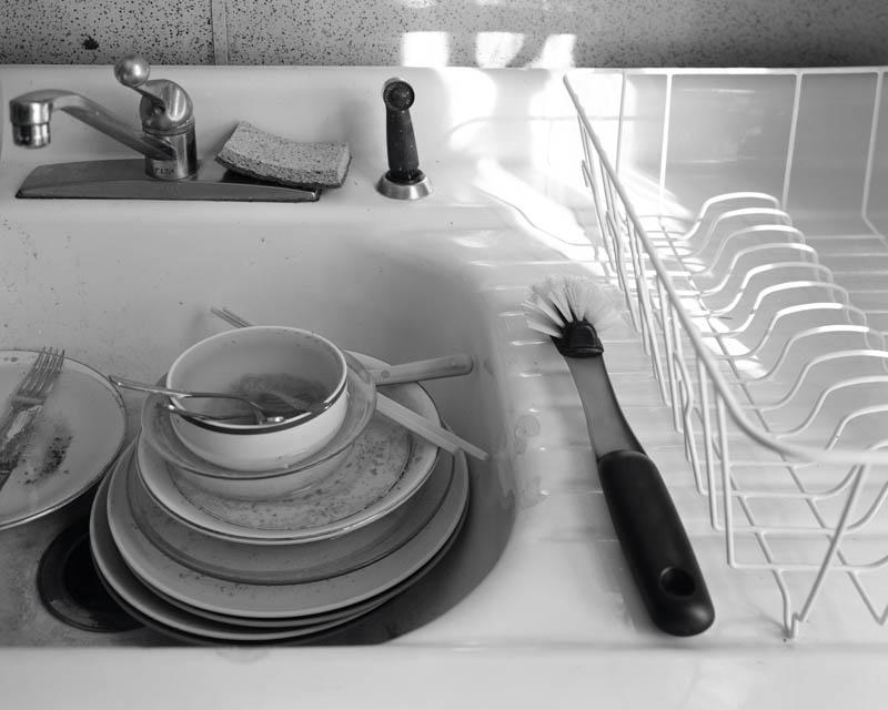 Still Life Domestique