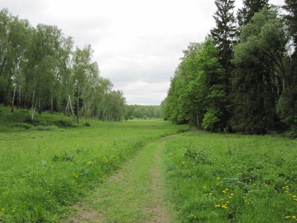 path-through-tolstoys-estate-at-yasnaya-polyana-friday