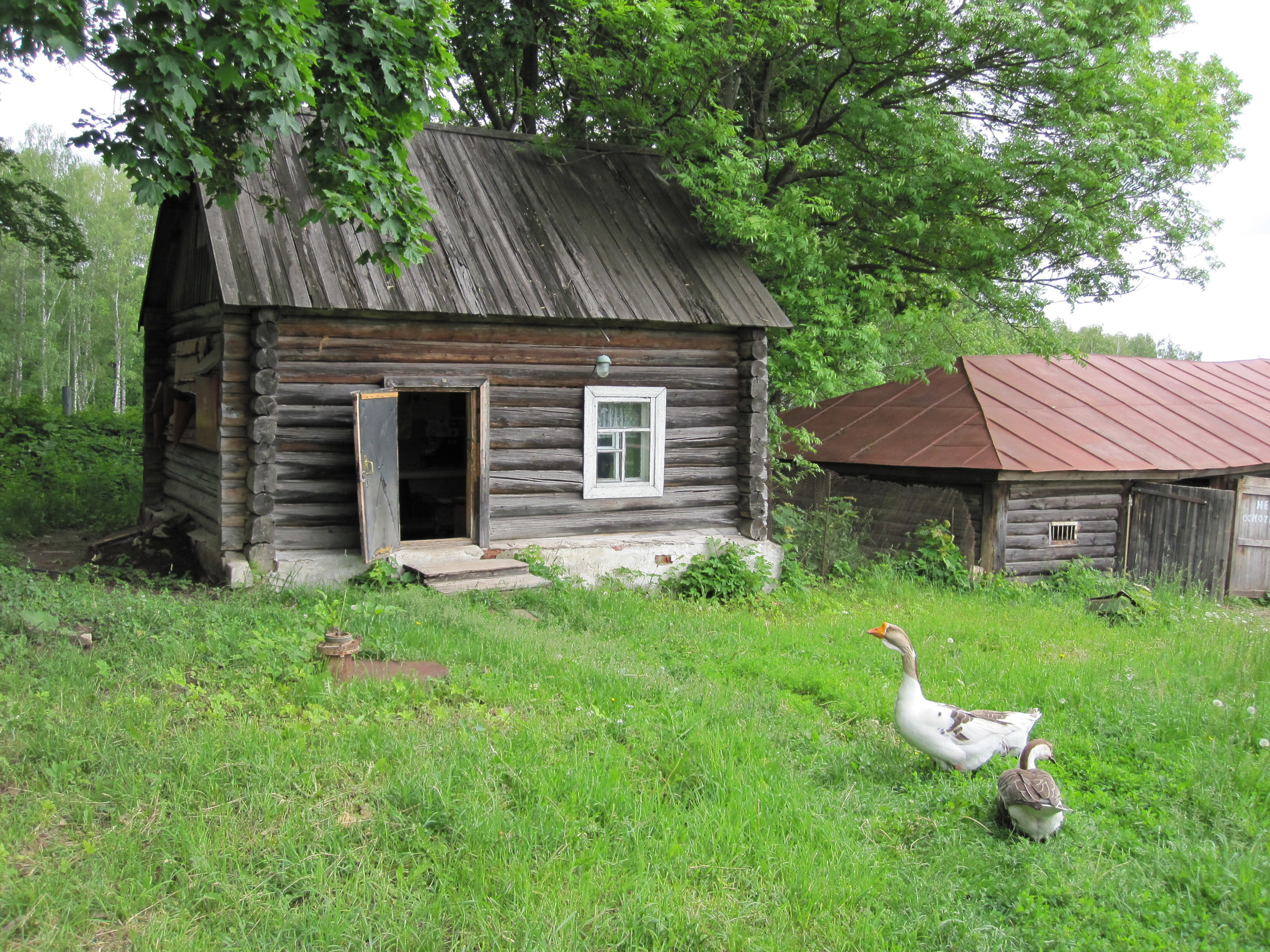 rural-scene-at-yasnaya-polana1