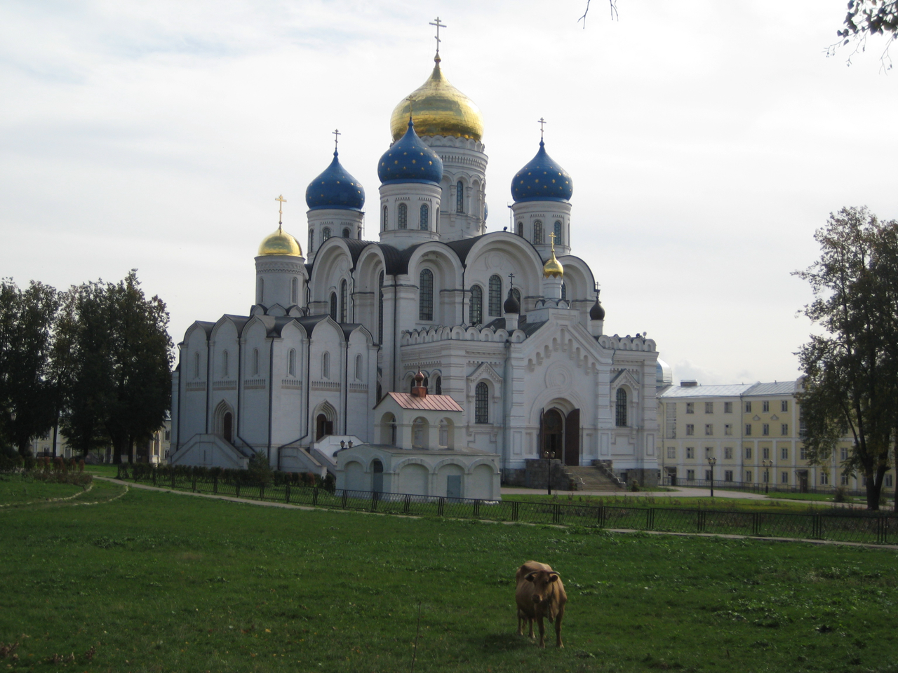 cow-in-front-of-the-cathedrals