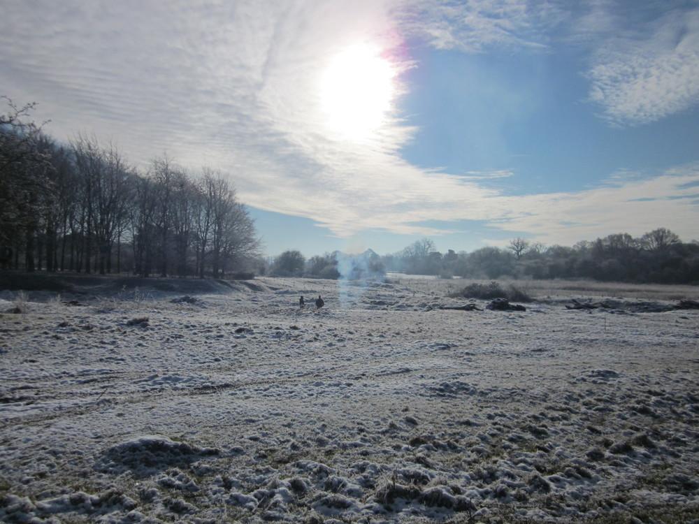 hatfield-frost-028.jpg