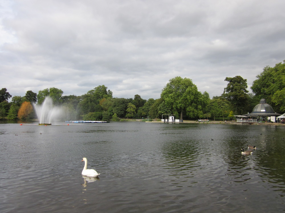 and everything in between. Victoria Park looked particularly good with its revamped lake
