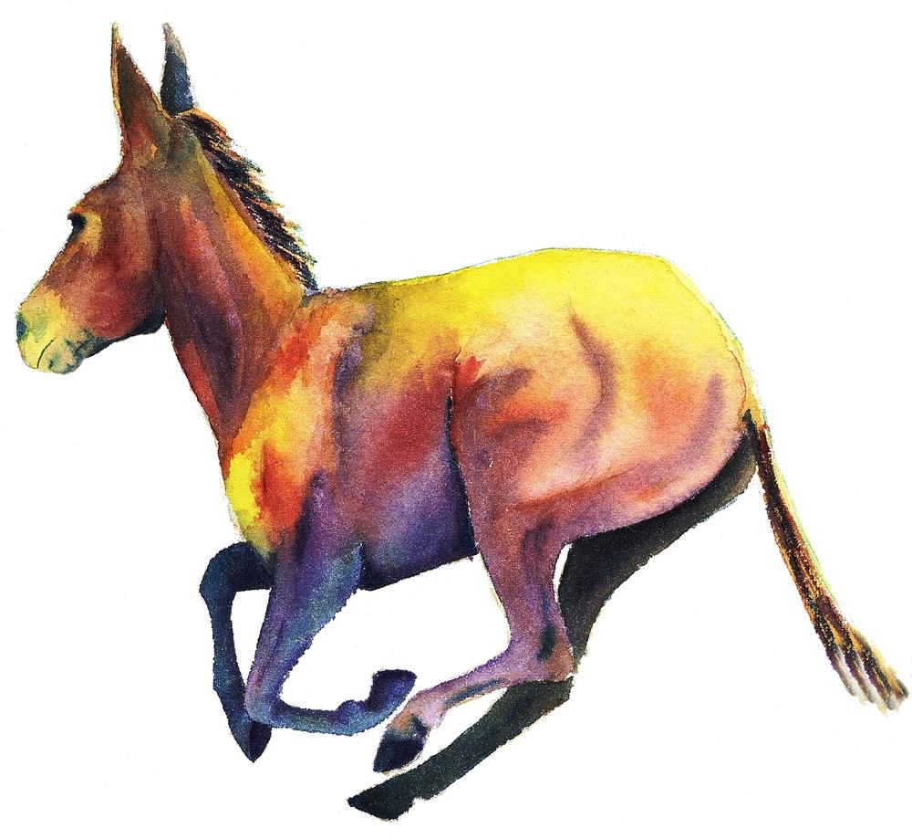 Running Mule