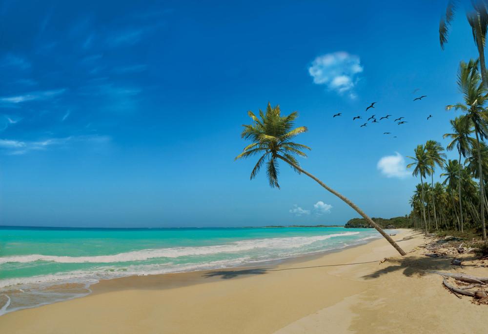 beach_highres.jpg