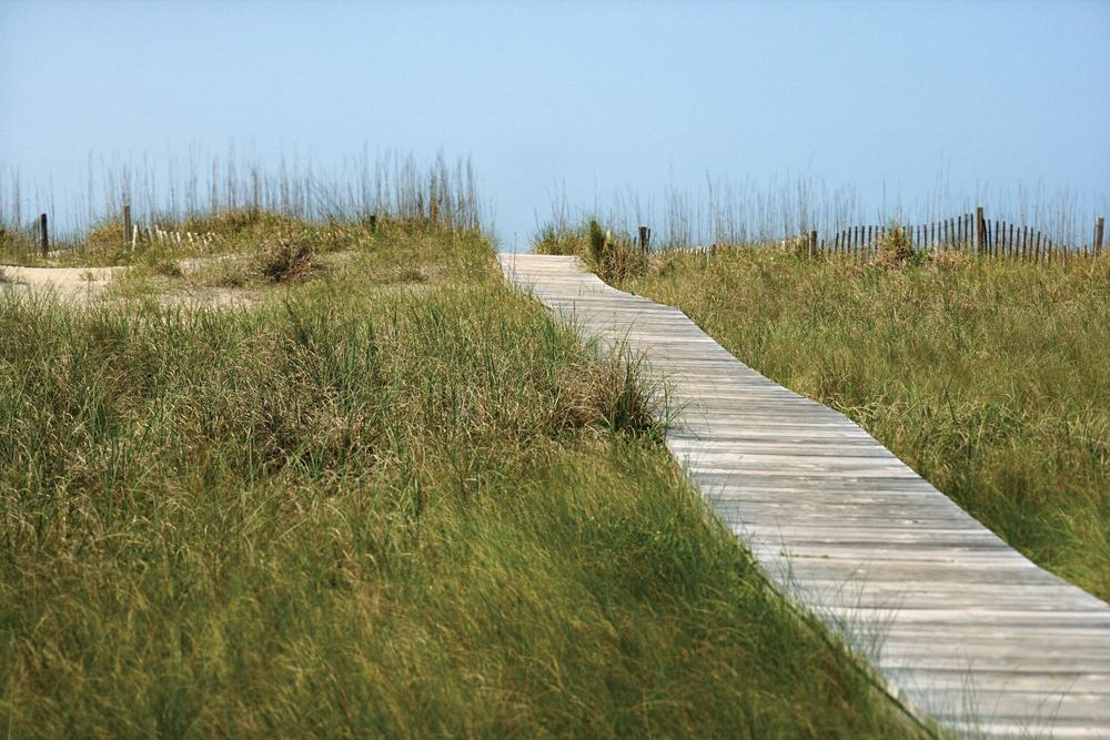 boardwalk_highres.jpg