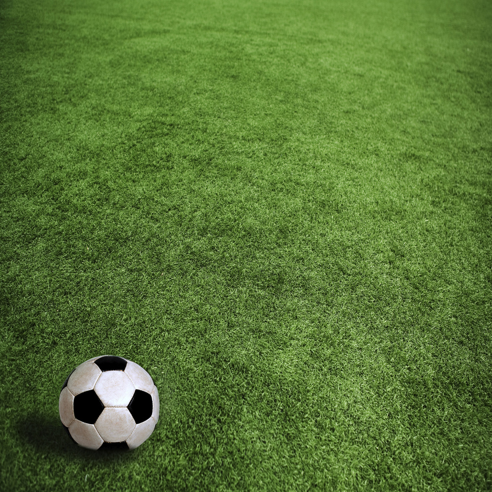 SoccerballGrass.jpg