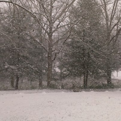 snow fall in blue ridge.jpg