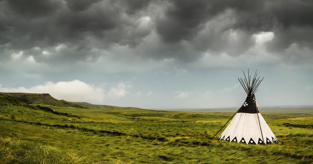 Lone camper