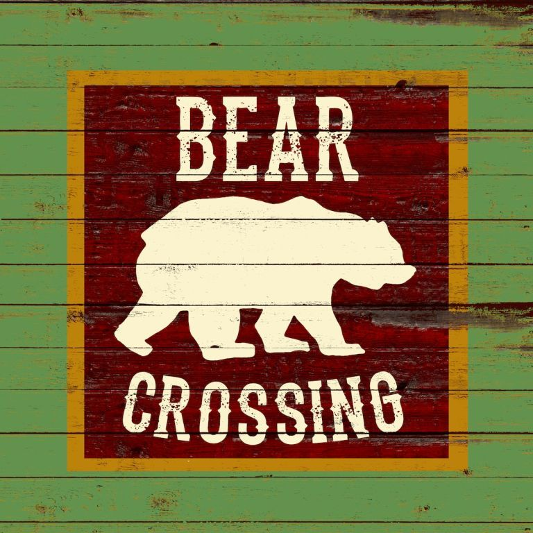 S445 bear crossing LR