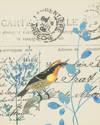 Antique Bird Carta Postal 1.jpg