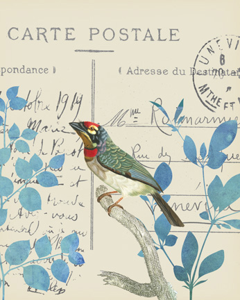 Antique Bird Carta Postal 2.jpg