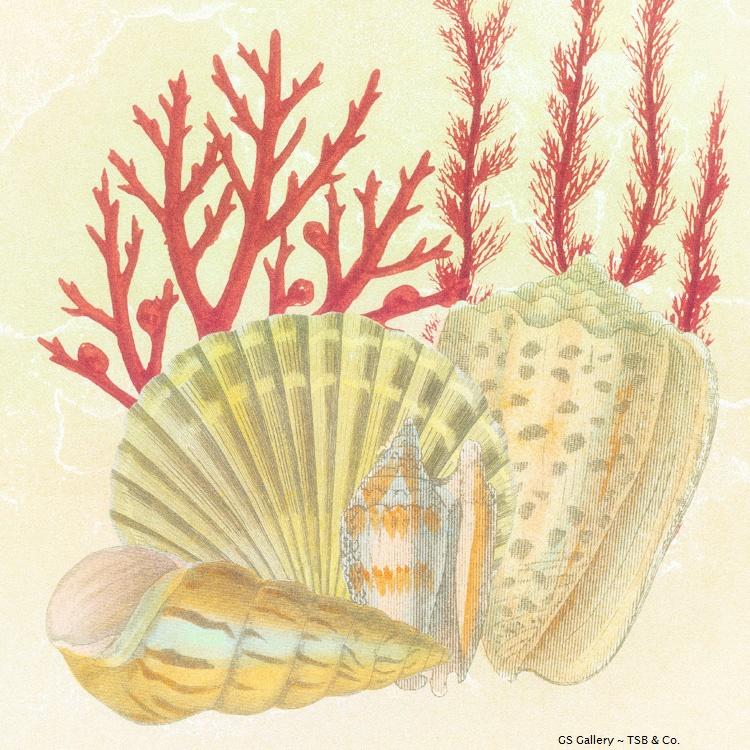 G307 Sea Life I.jpg