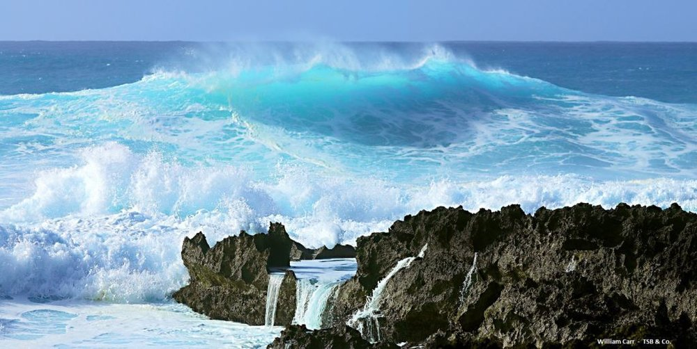 WC%20TSB%20OCEAN%20SPRAY%20OAHU%20.jpg