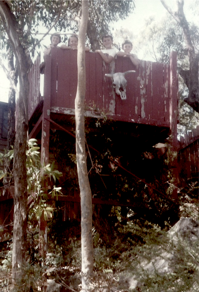 Tree-House-Kirrawee