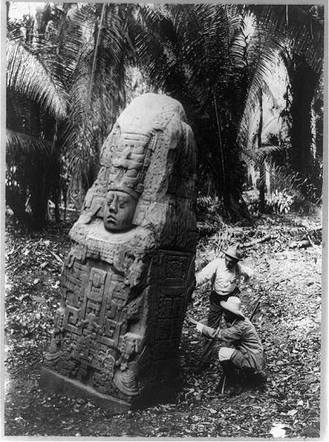 Buried stela at Quiriguá. Date unknown, but I imagine ca. 1912. Library of Congress
