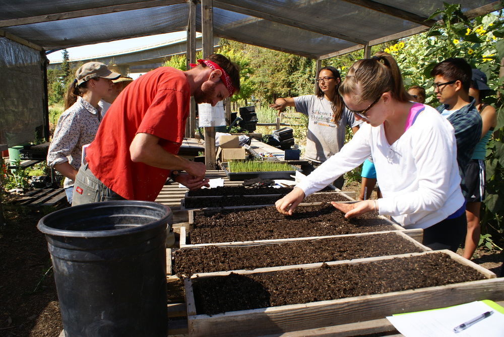 The farm interns plant seeds to be grown in the greenhouses.