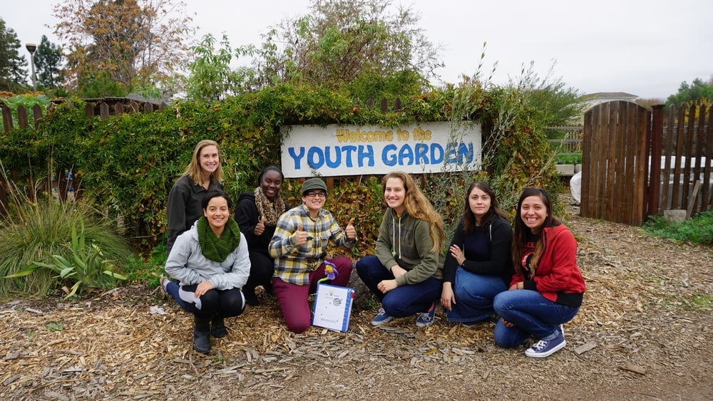 Students from San Jose City College buzzed over to the Youth Garden to deliver their donation and pollinator lesson plans.