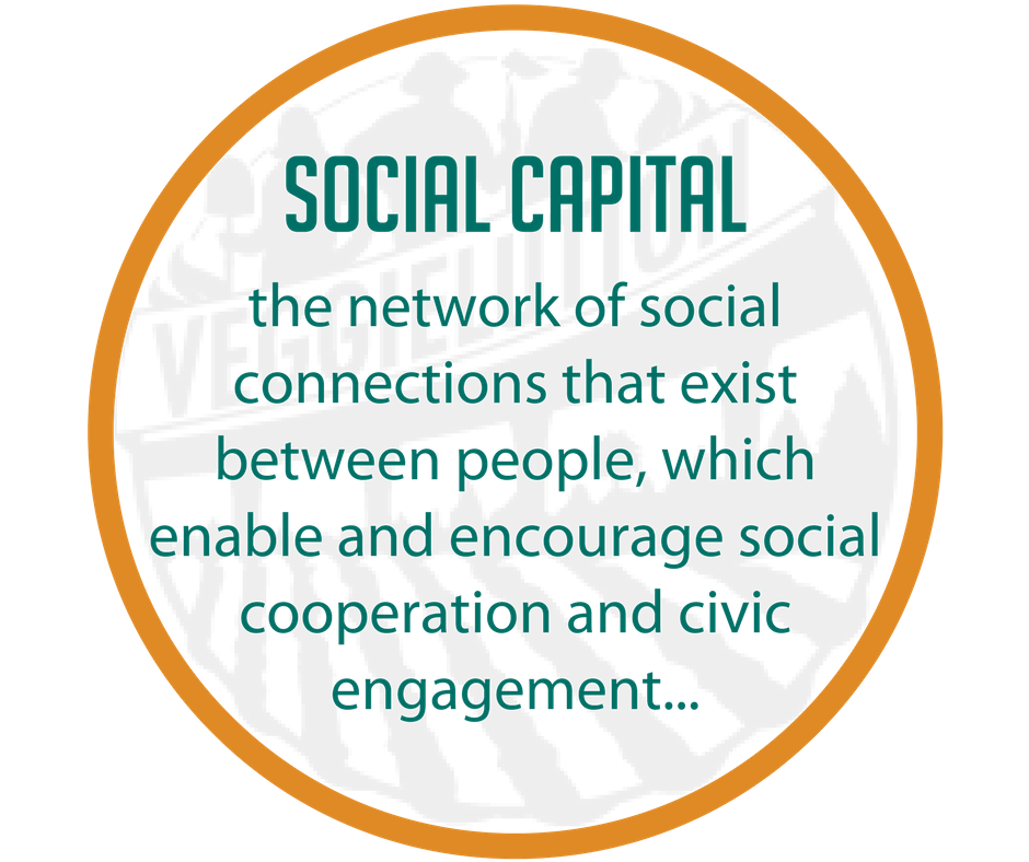 We believe that building social capital--the network of social connections that exist between people, which enable and encourage social cooperation and civic engagement--is the key to addressing these issues..png