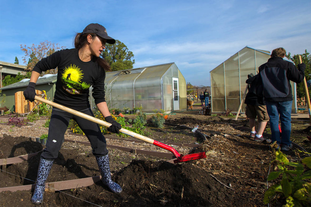 KQED FOOD - Can San Jose Revitalize Local Food and Farms in Silicon Valley? July 21, 2017