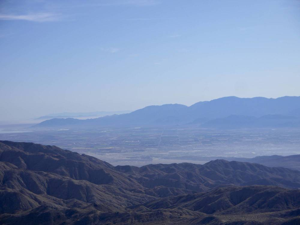 Look to Palm Springs.jpg