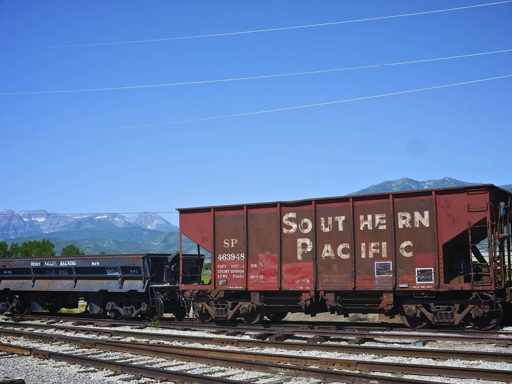 P1100651.jpg