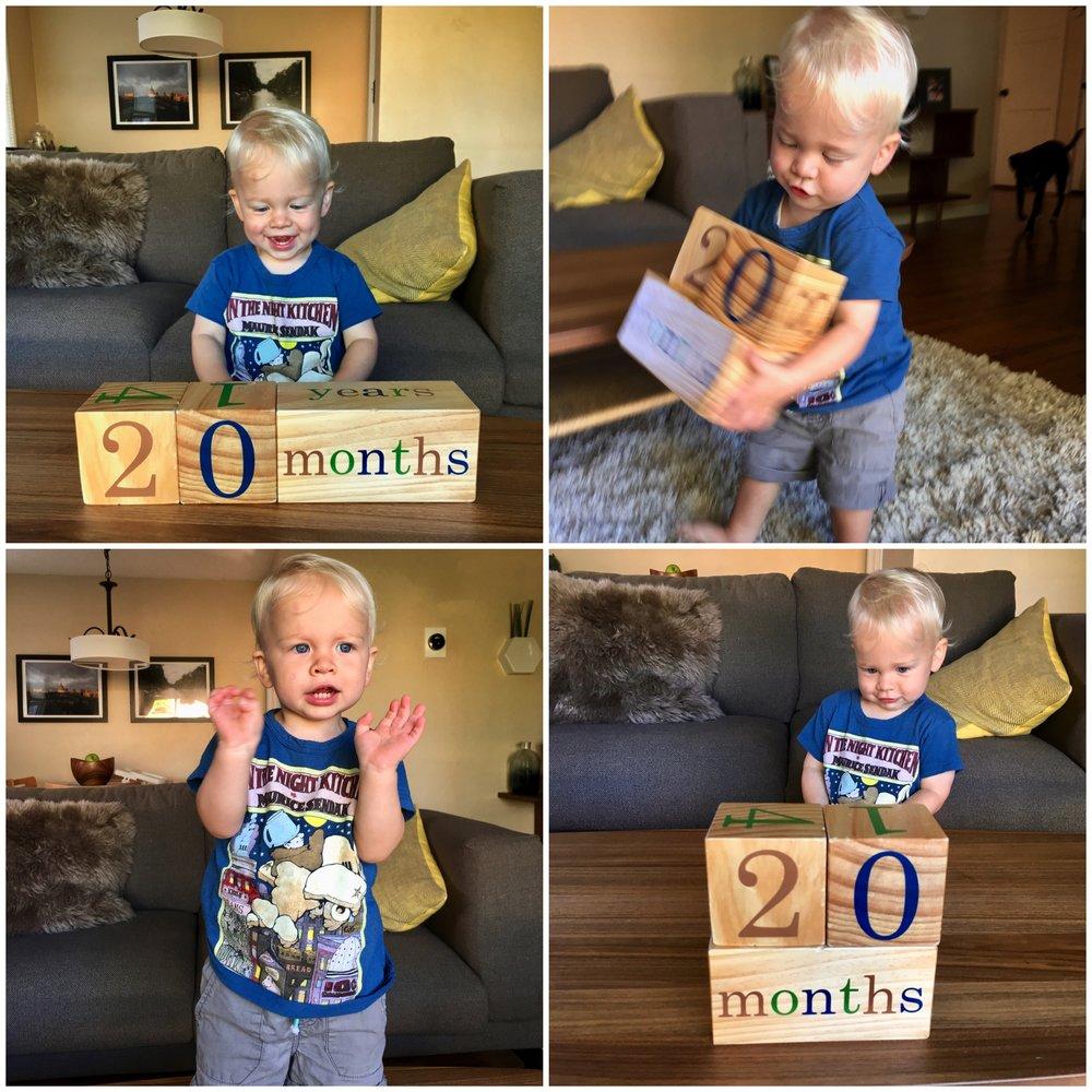 20_months.jpg