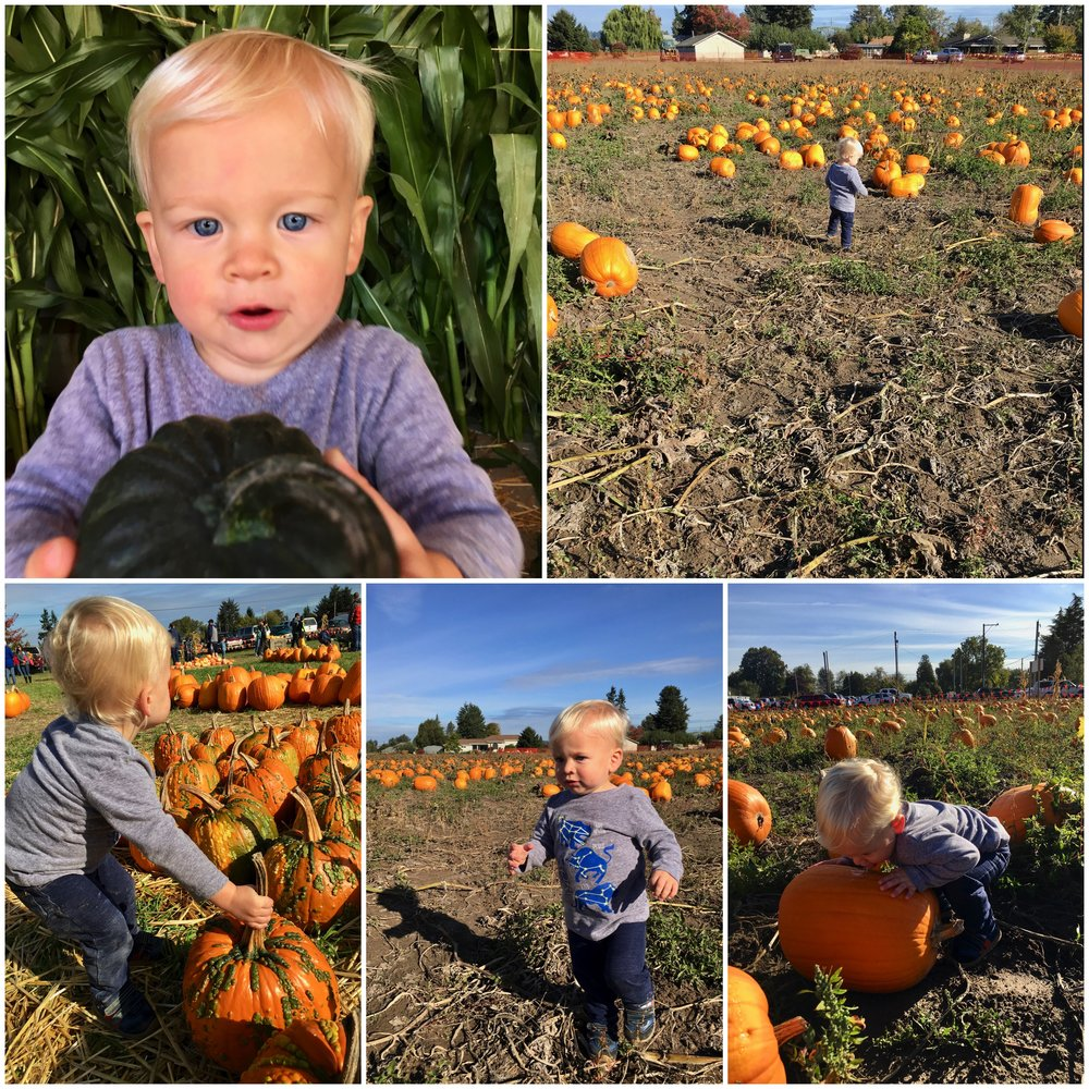 caleb-and-pumpkins.jpg