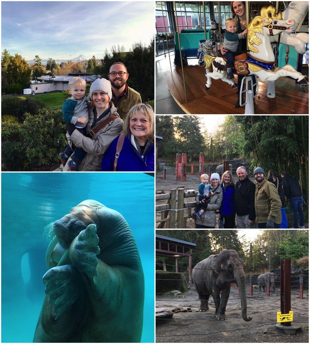 NYE_Zoo.jpg