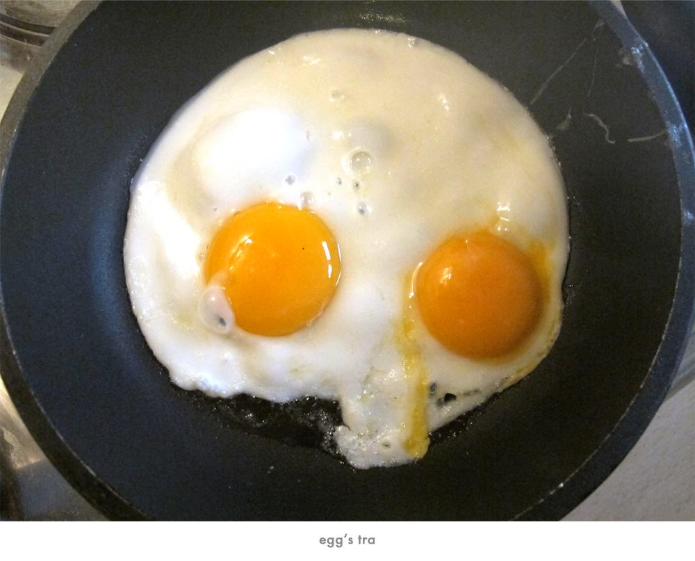 eggstra.jpg