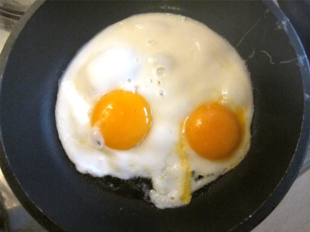 eggs'tra. 2013