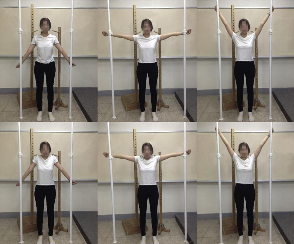 Figura dos exercícios estudados por Choi et al. [3]