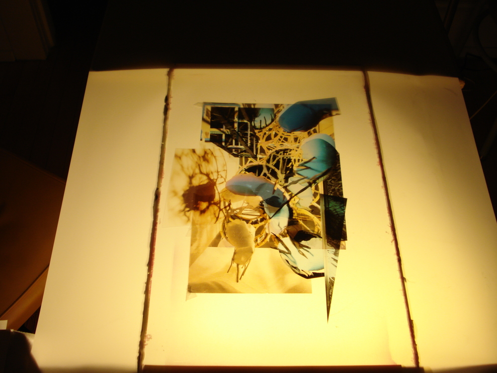 Boarding House, photograph collage on light table, 2008