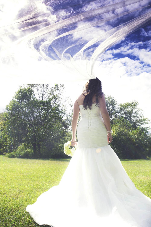 Lucht Wedding 5d 1644.jpg