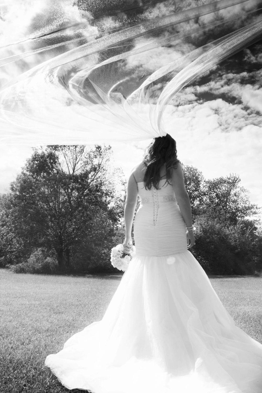 Lucht Wedding 5d 1644_1.jpg