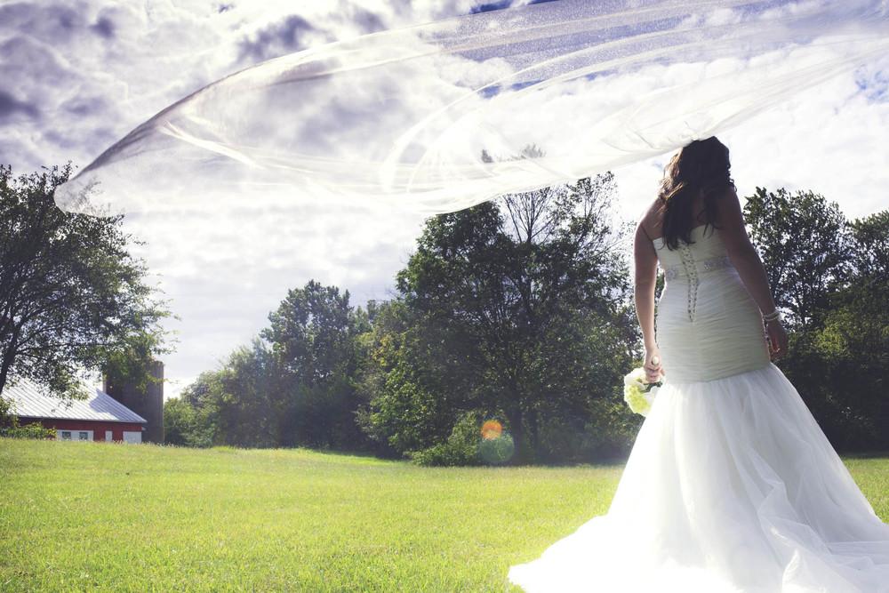Lucht Wedding 5d 1650.jpg