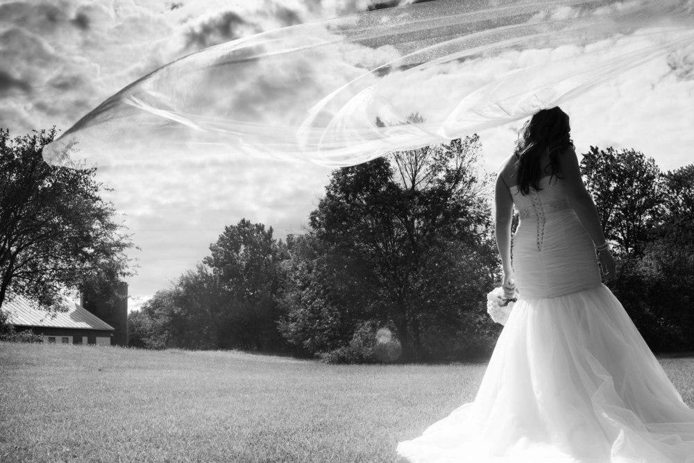 Lucht Wedding 5d 1650_1.jpg