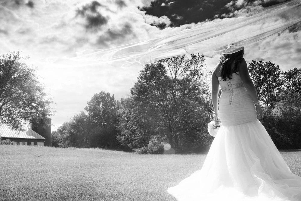 Lucht Wedding 5d 1652_1.jpg