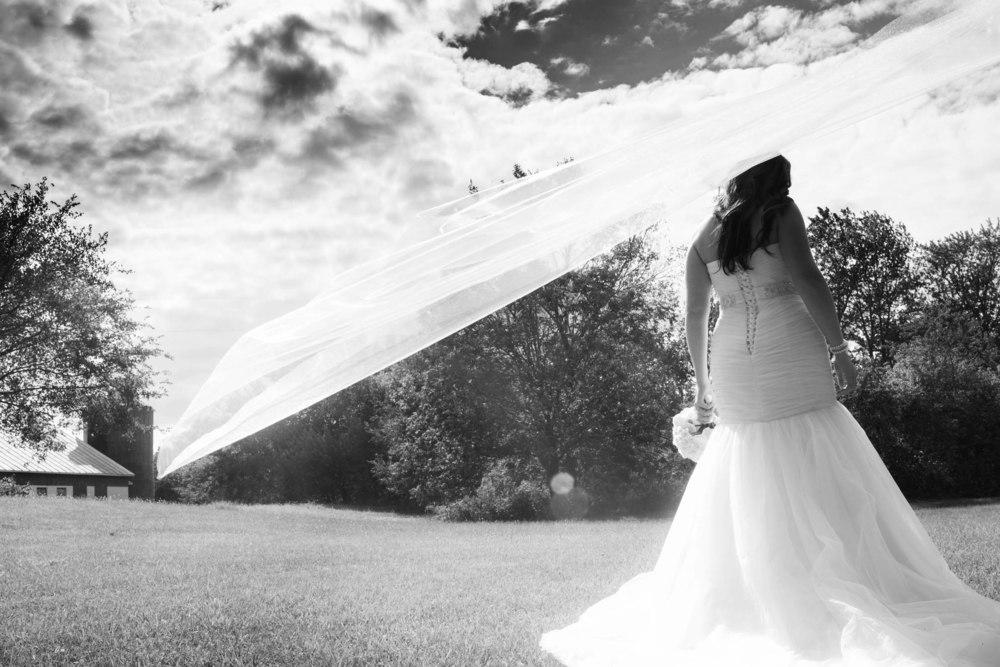 Lucht Wedding 5d 1654_1.jpg