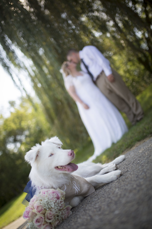 Alberti Wedding 5D 1 753.jpg