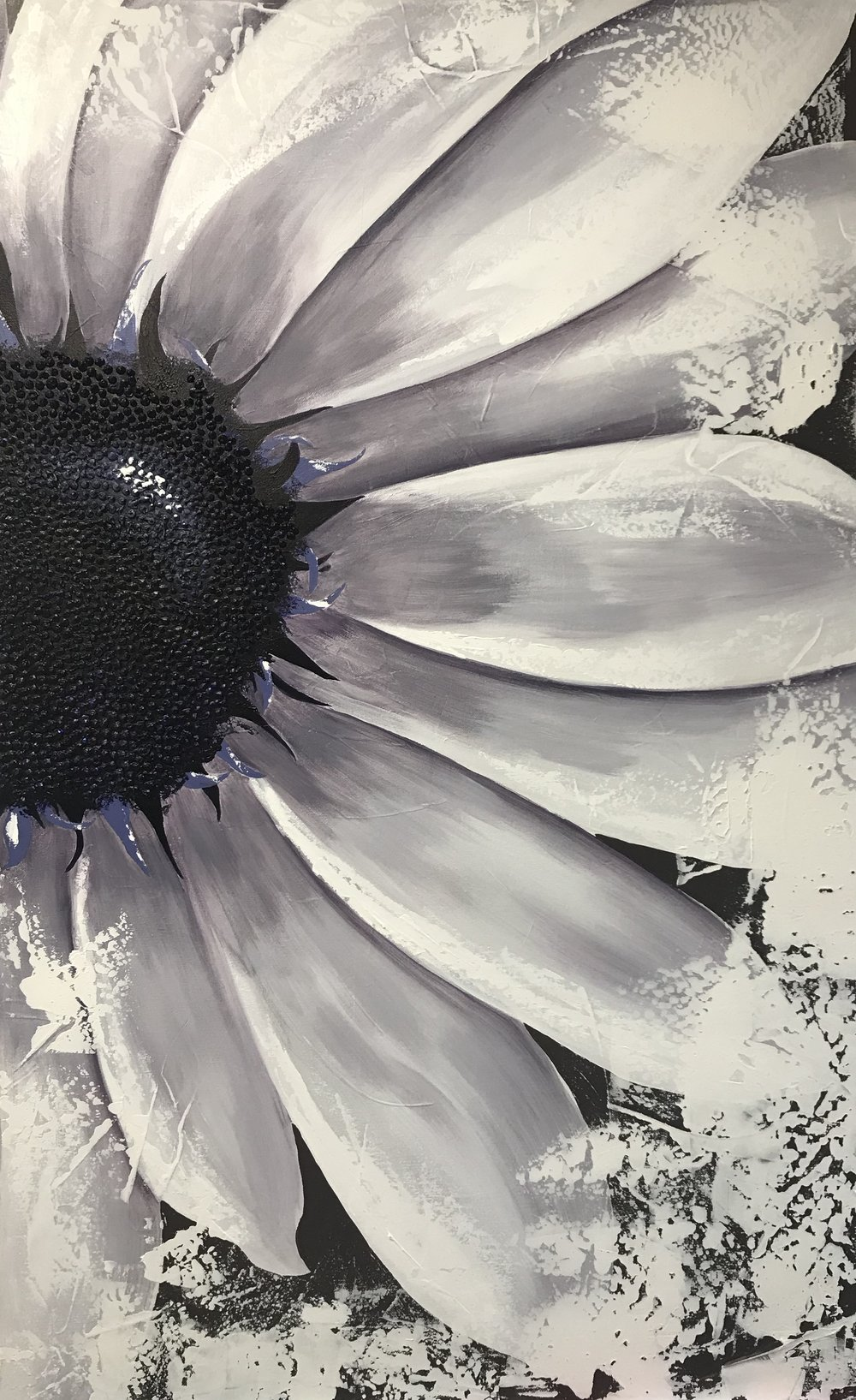 Daisy 310419