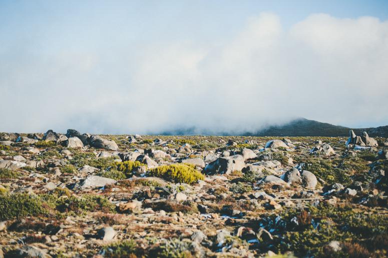 Tasmania 2013 -131.jpg