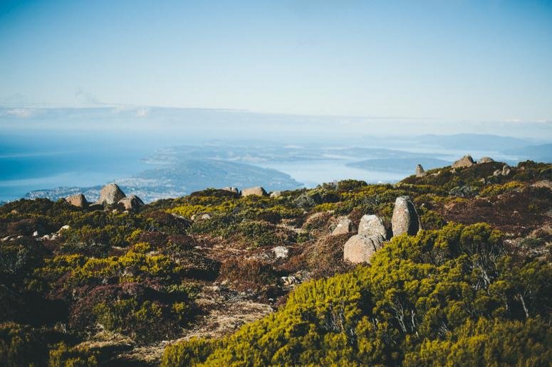 Tasmania 2013 -145.jpg