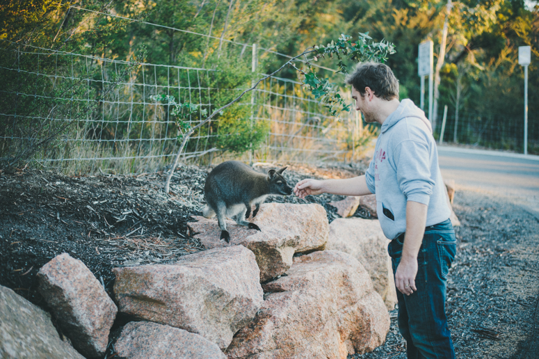 Tasmania 2013 -176.jpg