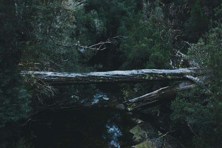 Tasmania 2013 -213.jpg