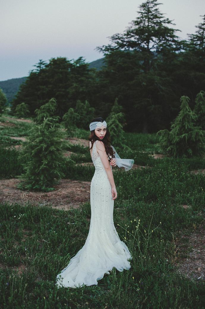 Athena Blog 2-28.jpg